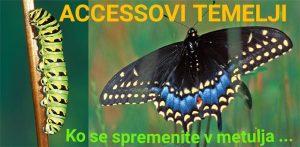 Accessov seminar Temelji